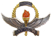 Air Training Command Master Instructor (pre-1966)