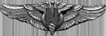 Flight Nurse Badge