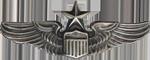 Senior Pilot Badge