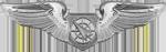 Air Battle Manager (Basic)