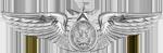 Aircrew Enlisted (Senior)