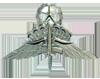 Military Free Fall Jumpmaster