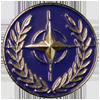 NATO Badge