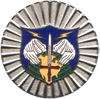 NORAD Command Badge