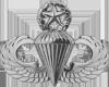 Parachutist (Master)