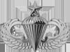 Parachutist (Senior)