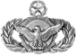 Security Police (Master)