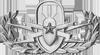 Explosives Ordnance Disposal (Senior)